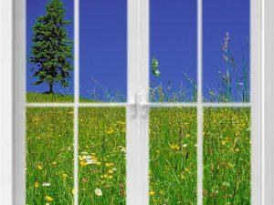 optische-barriere-fenster-mit-wiese