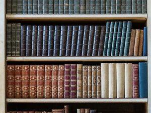 Bücherwand als optische Tür-Barriere