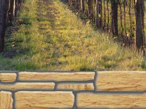 optische-barriere-bruchstein-mit-weinweg