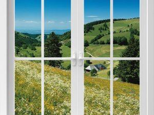 Optische Barriere Fenster Allgäuwiese