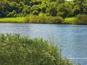 Einzelbild Fluss
